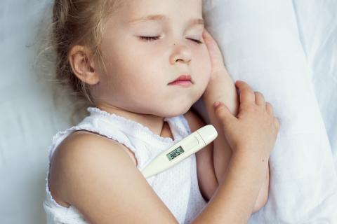 fiebre+en+bebes+de+1+año+causas